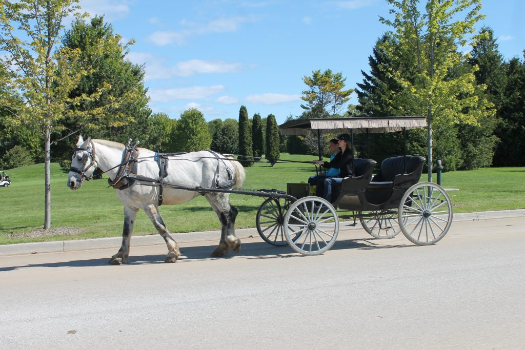 Horse-drawn carriage rides on Mackinac Island is one of the most popular things to do for visitors.