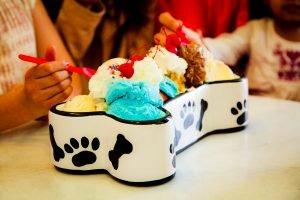 Grand Sundae in Dog Dish at Sadie's Ice Cream Parlor on Mackinac Island