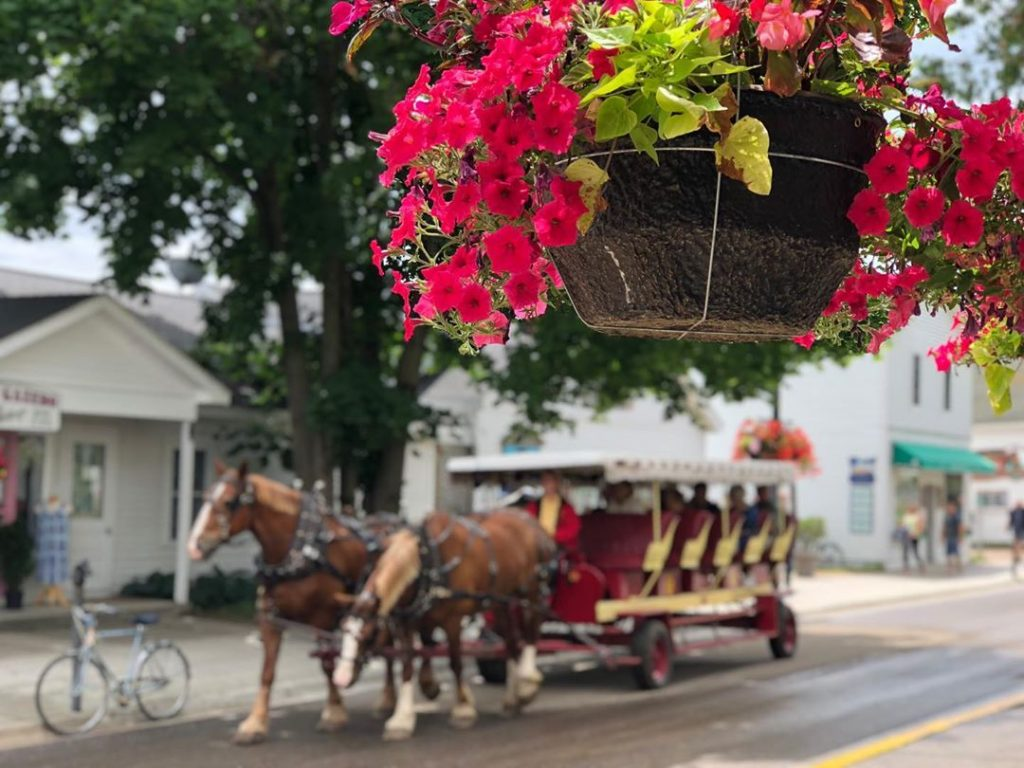 Pot of Flowers Hanging in Focus with Horse-Drawn Carriage in Background